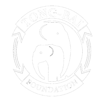 TONG BAI FOUNDATION